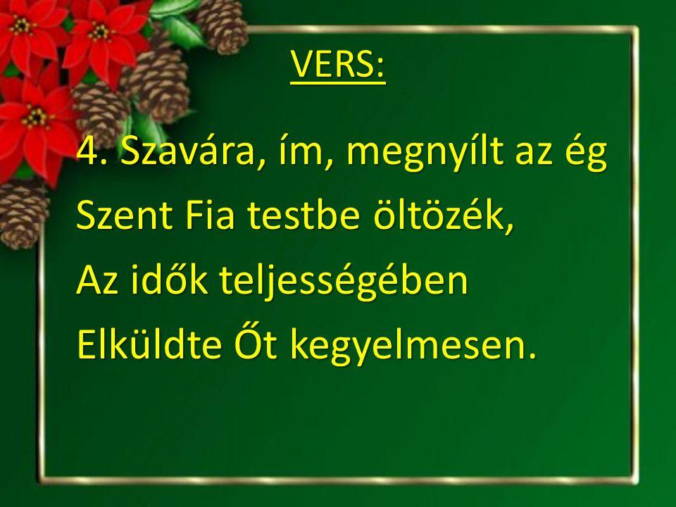 VERS: 4.