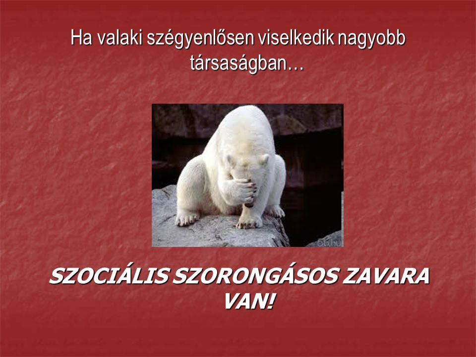 SZOCIÁLIS SZORONGÁSOS ZAVARA VAN!