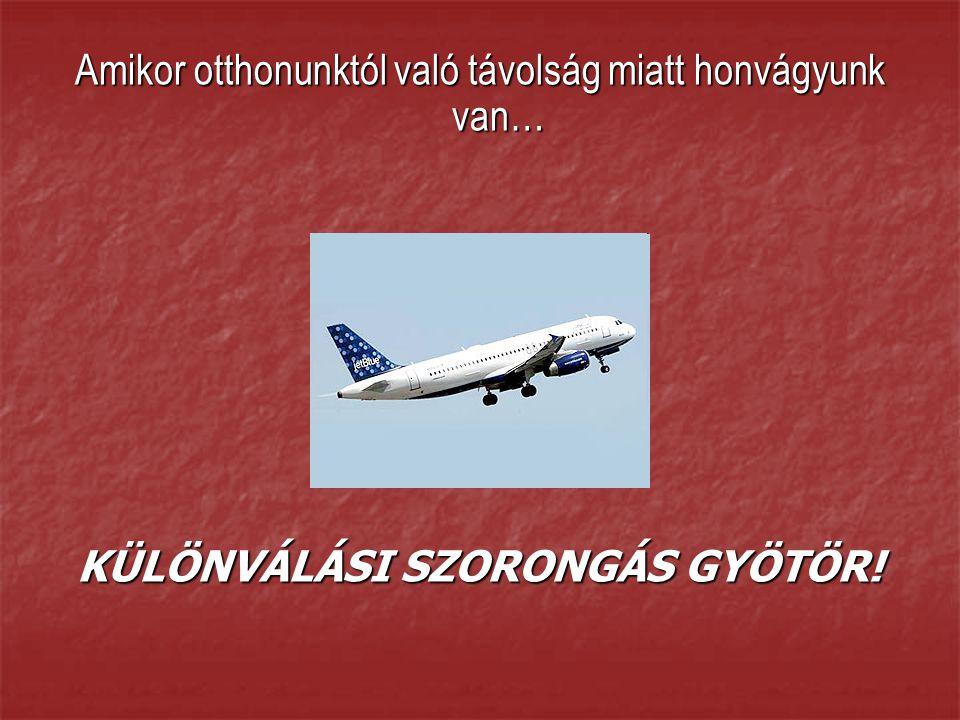 KÜLÖNVÁLÁSI SZORONGÁS GYÖTÖR!