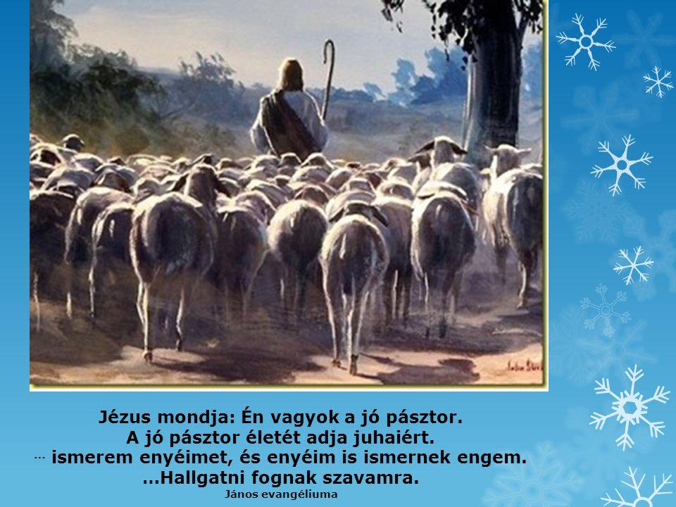 Jézus mondja: Én vagyok a jó pásztor.