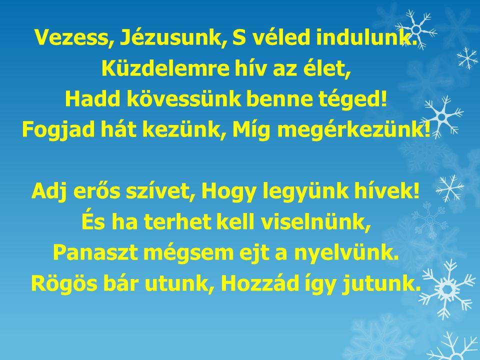 Vezess, Jézusunk, S véled indulunk