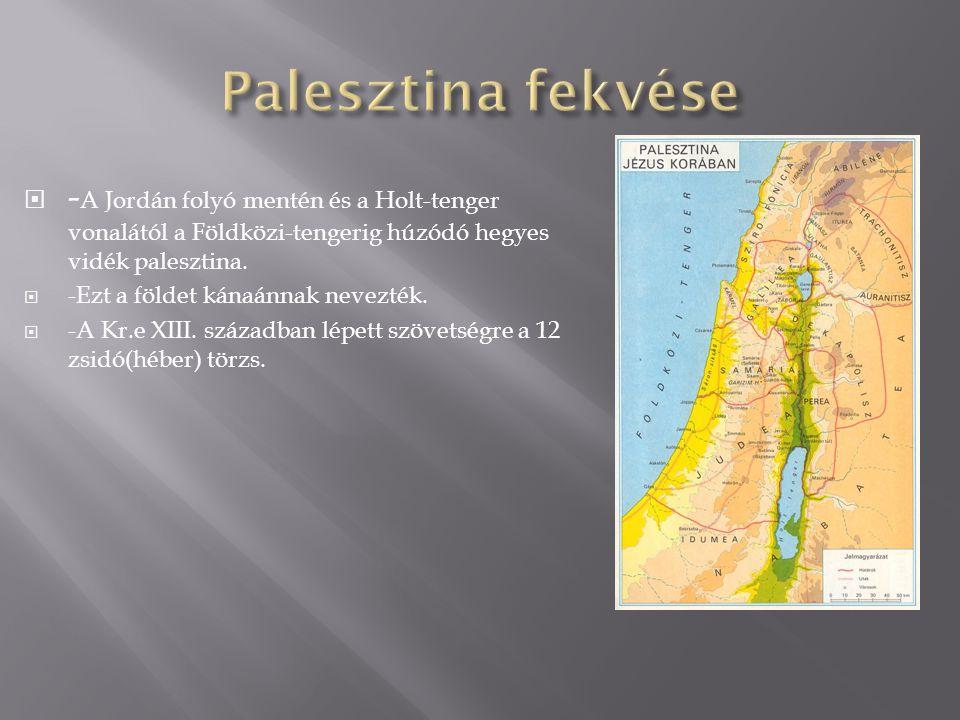 Palesztina fekvése -A Jordán folyó mentén és a Holt-tenger vonalától a Földközi-tengerig húzódó hegyes vidék palesztina.