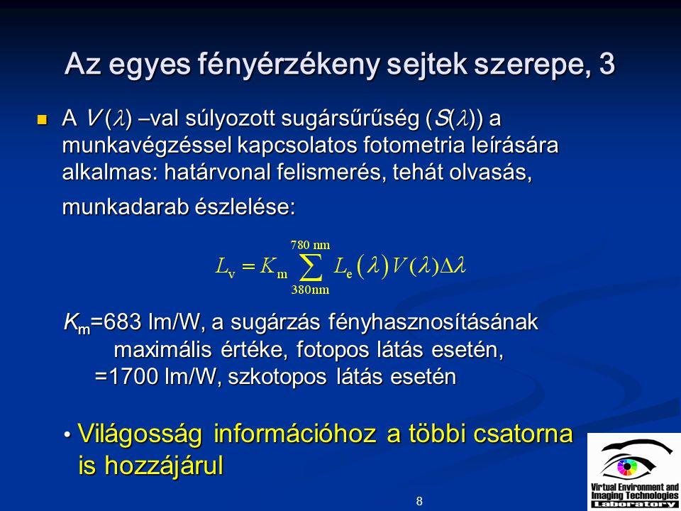 Az egyes fényérzékeny sejtek szerepe, 3
