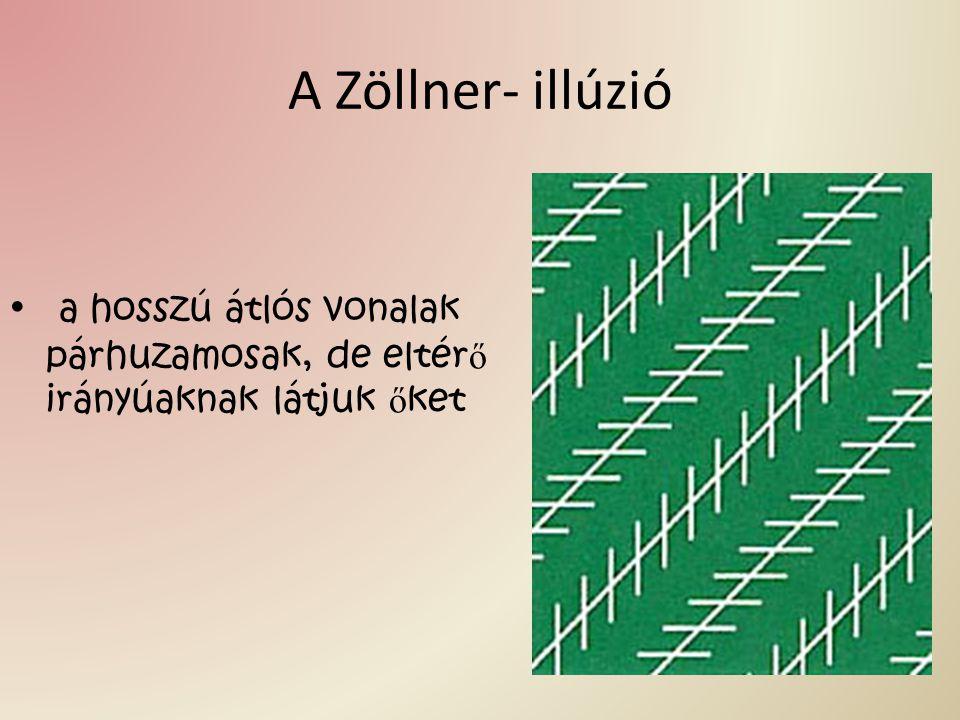 A Zöllner- illúzió a hosszú átlós vonalak párhuzamosak, de eltérő irányúaknak látjuk őket