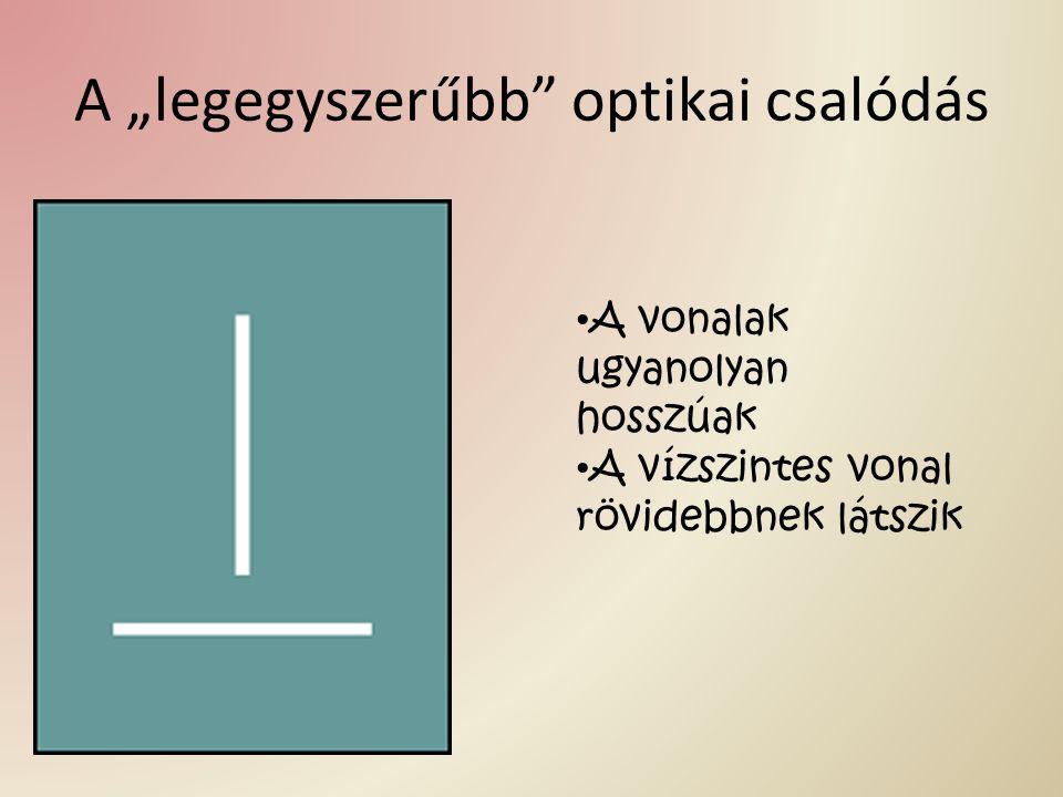 """A """"legegyszerűbb optikai csalódás"""