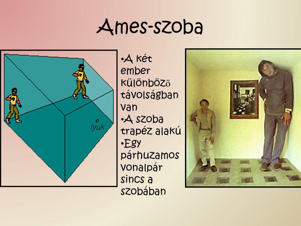 Ames-szoba A két ember különböző távolságban van A szoba trapéz alakú