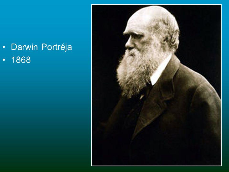 Darwin Portréja 1868