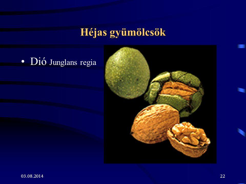 Héjas gyümölcsök Dió Junglans regia 04.04.2017