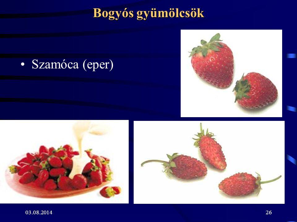 Bogyós gyümölcsök Szamóca (eper) 04.04.2017