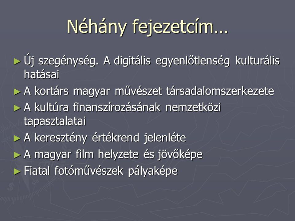 Néhány fejezetcím… Új szegénység. A digitális egyenlőtlenség kulturális hatásai. A kortárs magyar művészet társadalomszerkezete.