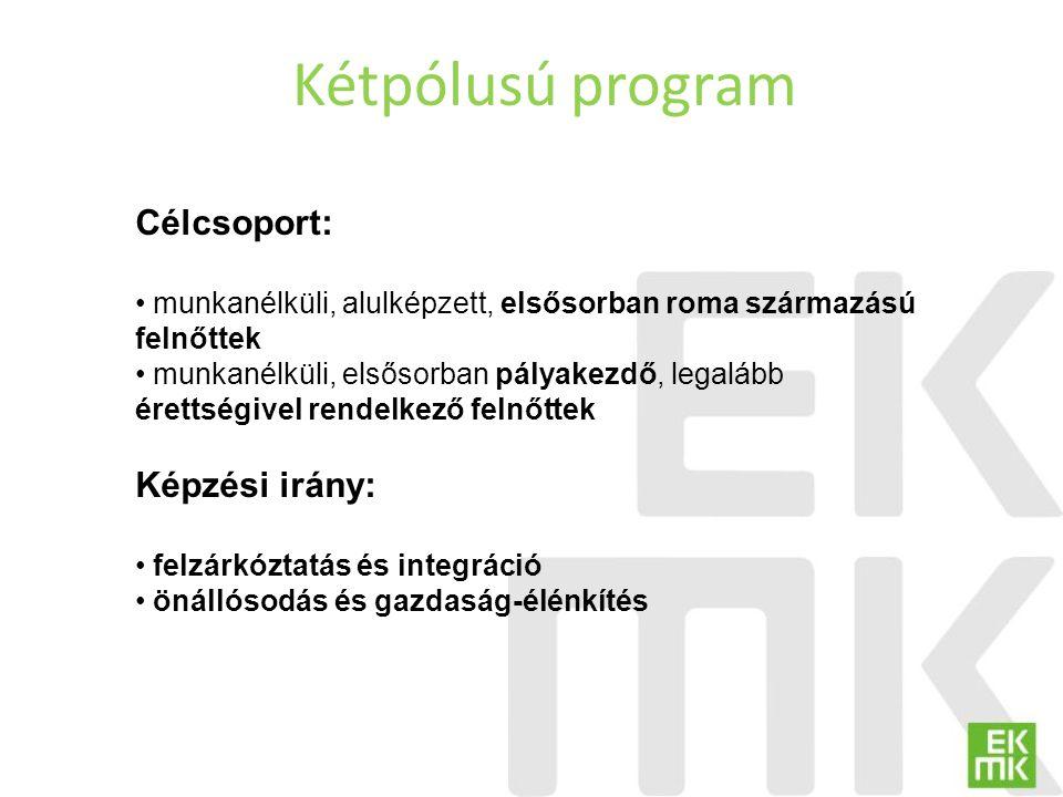 Kétpólusú program Célcsoport: Képzési irány: