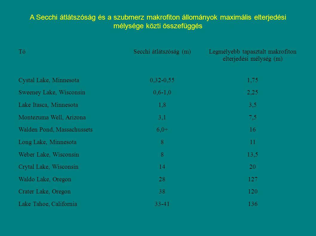 A Secchi átlátszóság és a szubmerz makrofiton állományok maximális elterjedési mélysége közti összefüggés