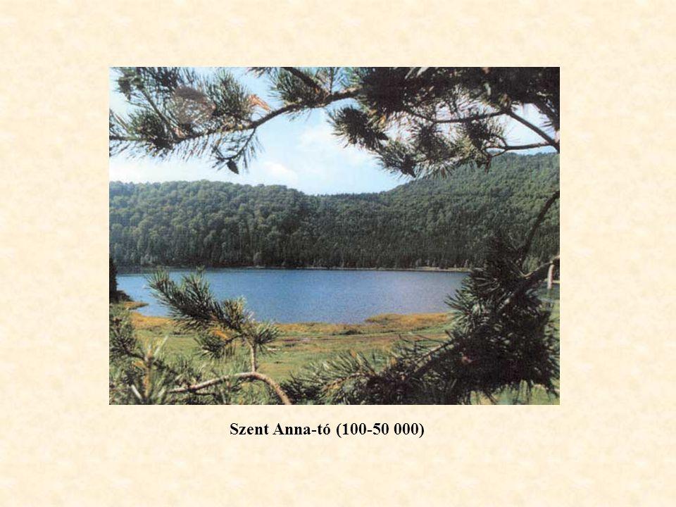Szent Anna-tó (100-50 000)
