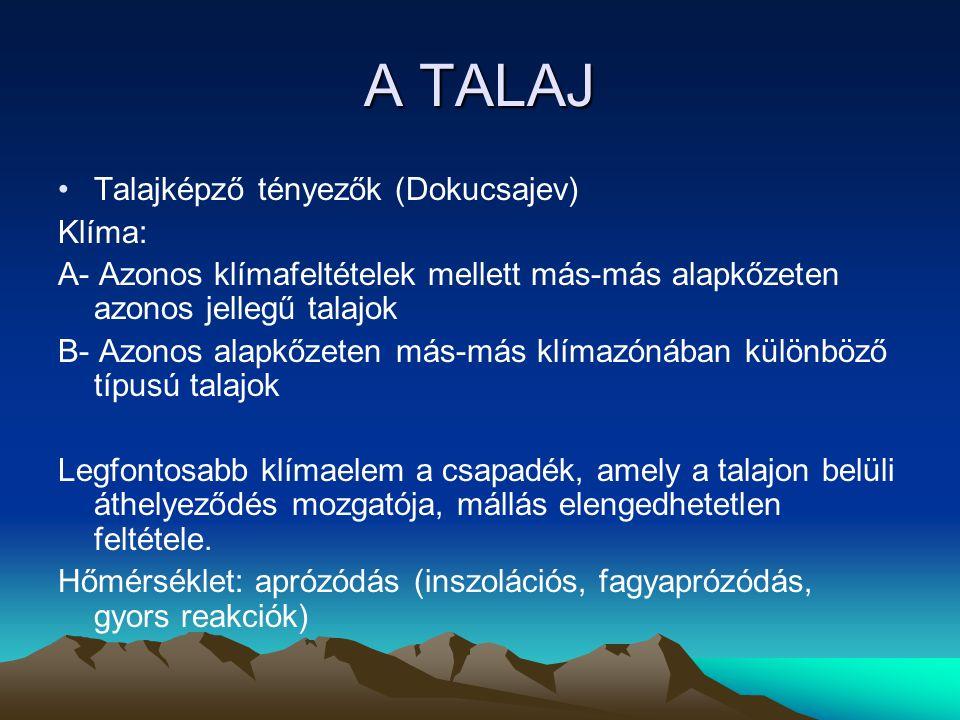 A TALAJ Talajképző tényezők (Dokucsajev) Klíma:
