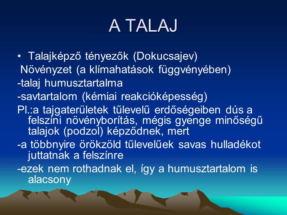 A TALAJ Talajképző tényezők (Dokucsajev)