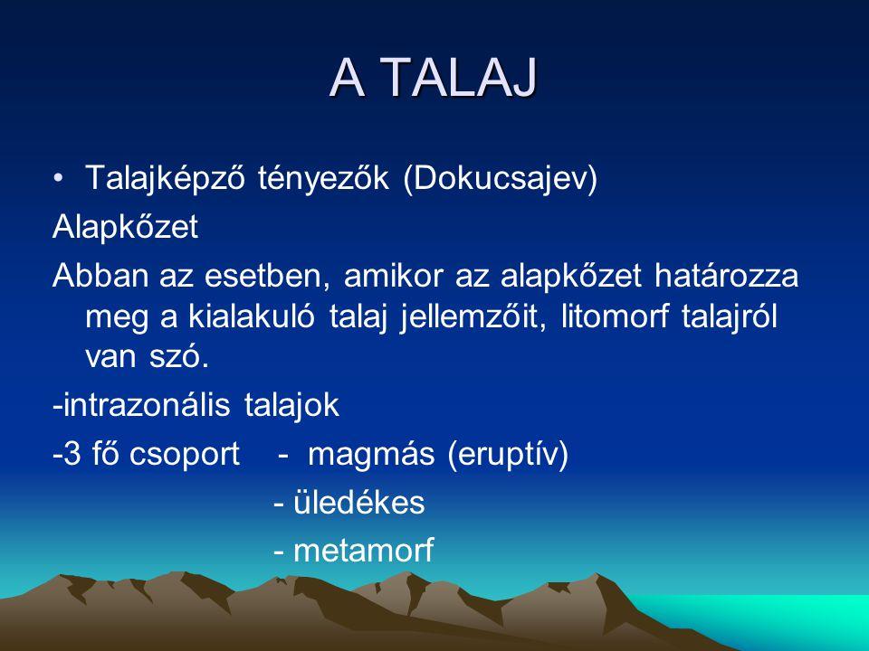 A TALAJ Talajképző tényezők (Dokucsajev) Alapkőzet