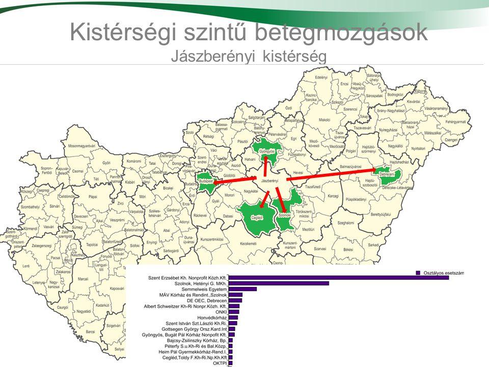 Kistérségi szintű betegmozgások Jászberényi kistérség