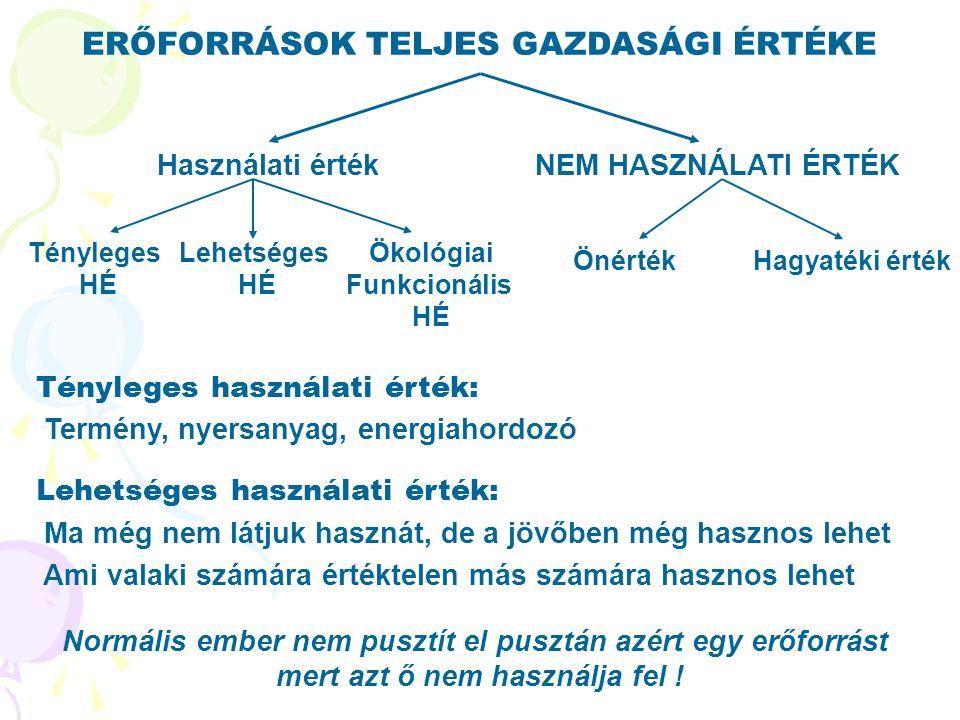 ERŐFORRÁSOK TELJES GAZDASÁGI ÉRTÉKE