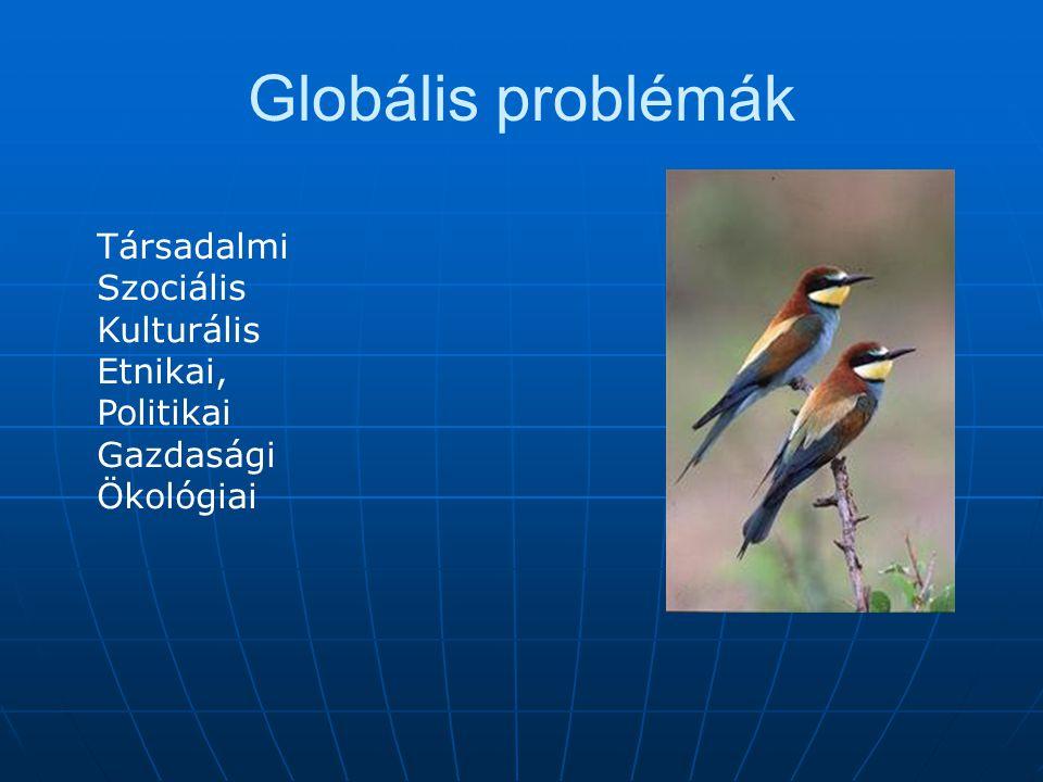 Globális problémák Társadalmi Szociális Kulturális Etnikai, Politikai
