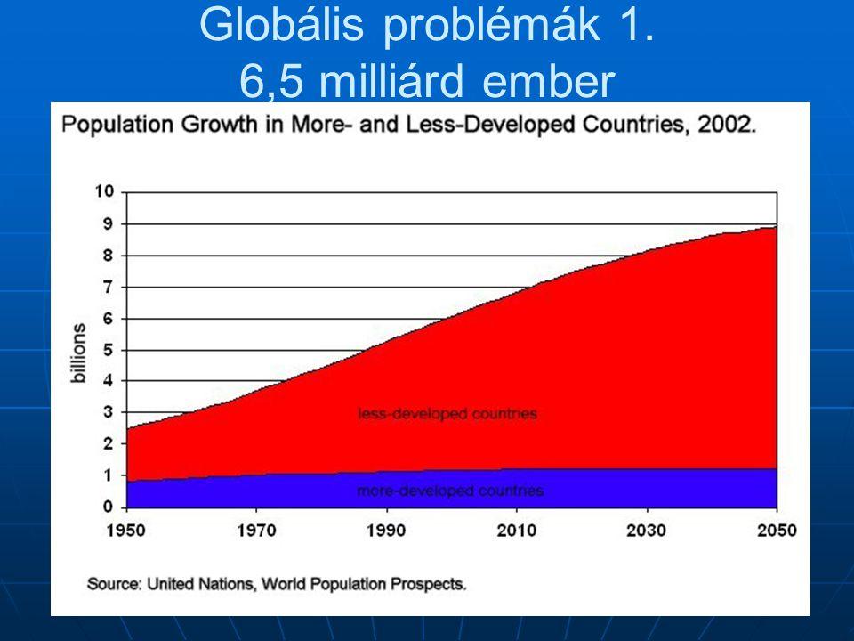 Globális problémák 1. 6,5 milliárd ember