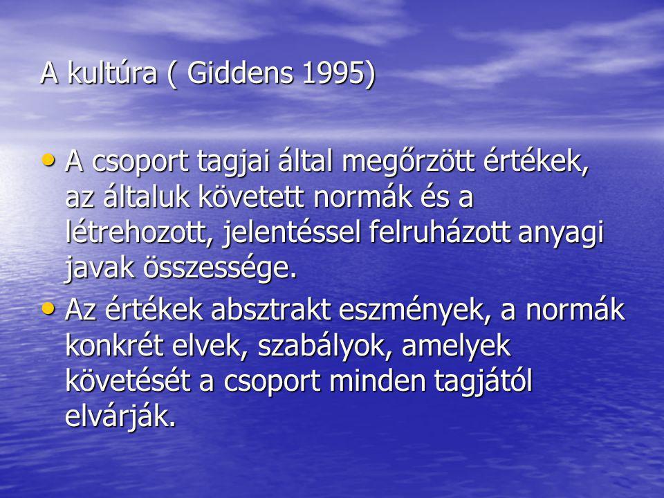 A kultúra ( Giddens 1995)