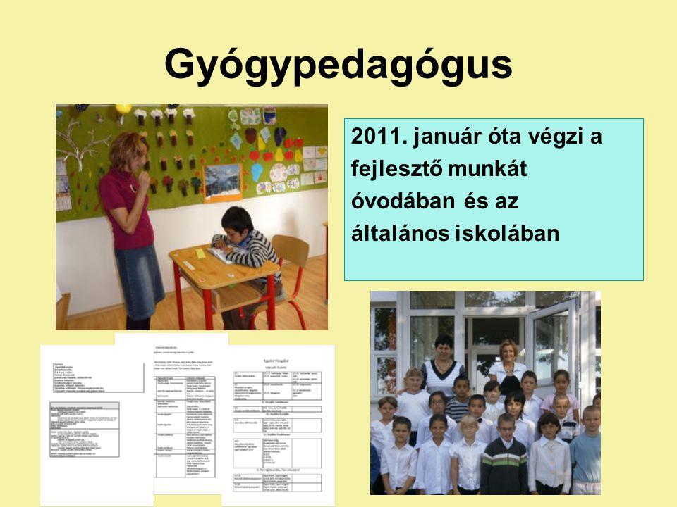 Gyógypedagógus 2011. január óta végzi a fejlesztő munkát