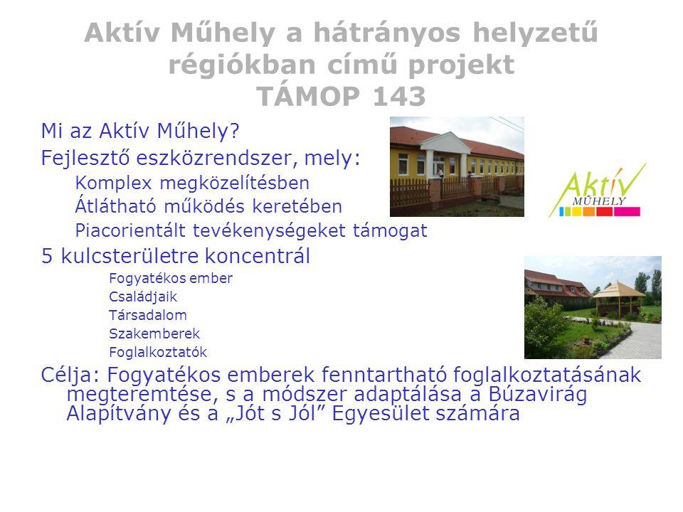 Aktív Műhely a hátrányos helyzetű régiókban című projekt TÁMOP 143