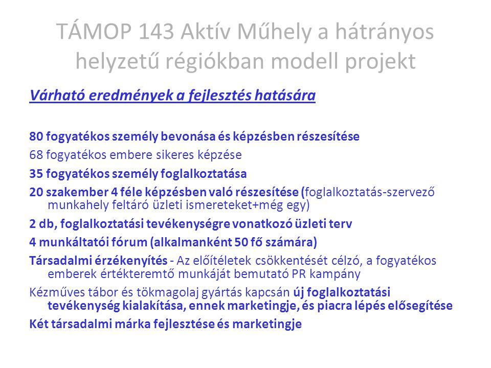 TÁMOP 143 Aktív Műhely a hátrányos helyzetű régiókban modell projekt