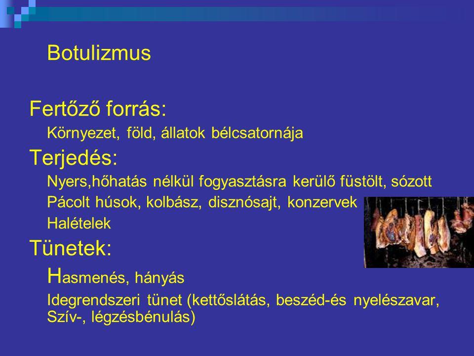 Botulizmus Fertőző forrás: Terjedés: Tünetek: Hasmenés, hányás