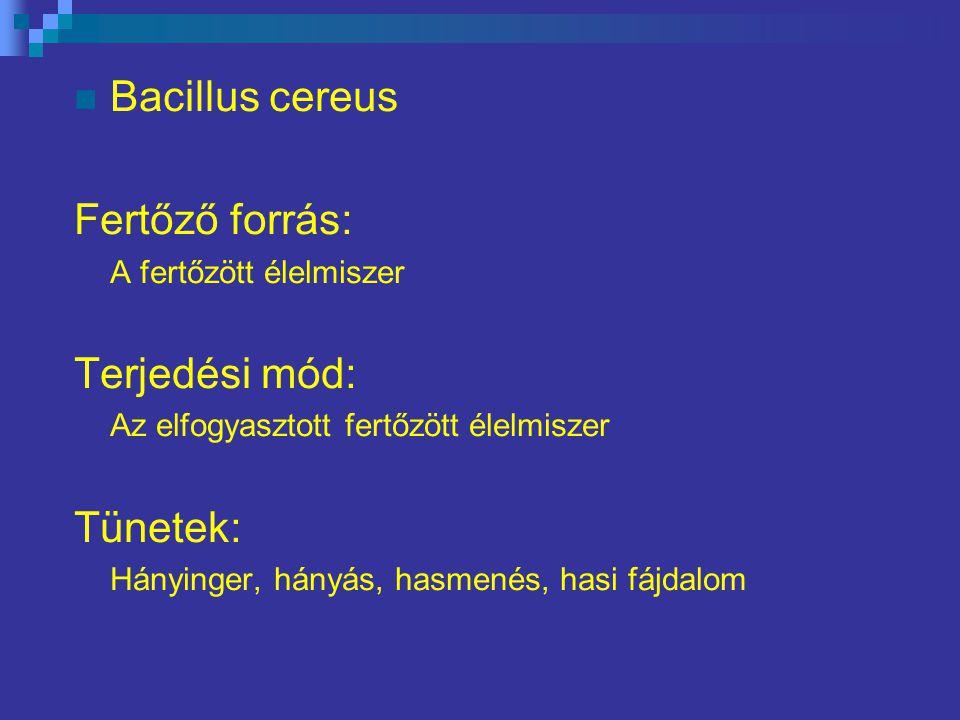 Bacillus cereus Fertőző forrás: Terjedési mód: Tünetek: