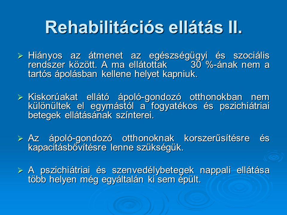 Rehabilitációs ellátás II.