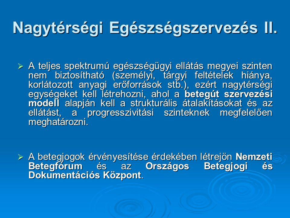 Nagytérségi Egészségszervezés II.