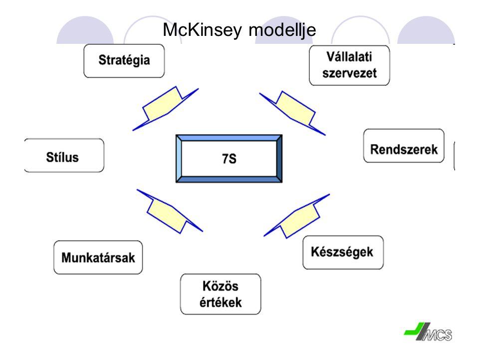 McKinsey modellje
