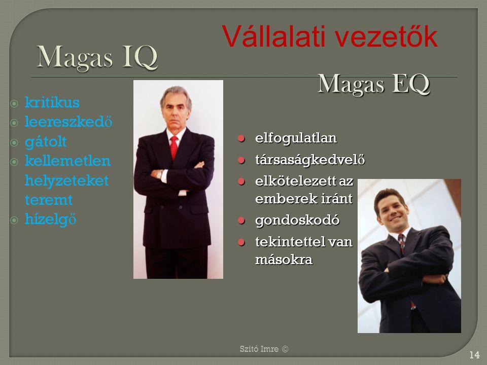 Magas IQ Vállalati vezetők Magas EQ kritikus leereszkedő gátolt