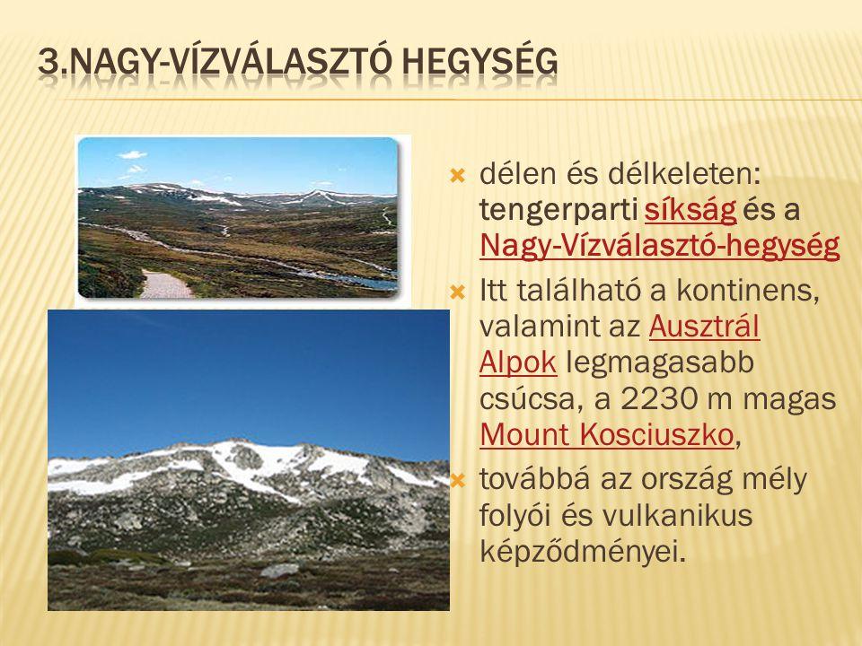 3.Nagy-vízválasztó hegység