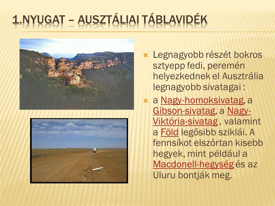 1.Nyugat – ausztáliai táblavidék