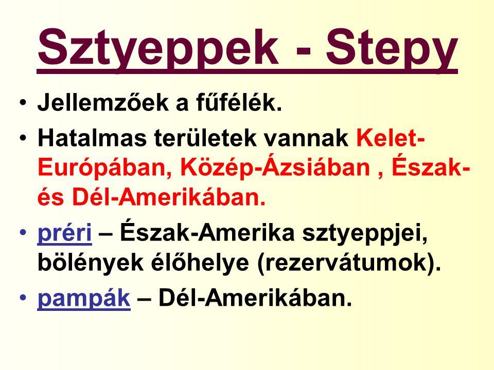 Sztyeppek - Stepy Jellemzőek a fűfélék.