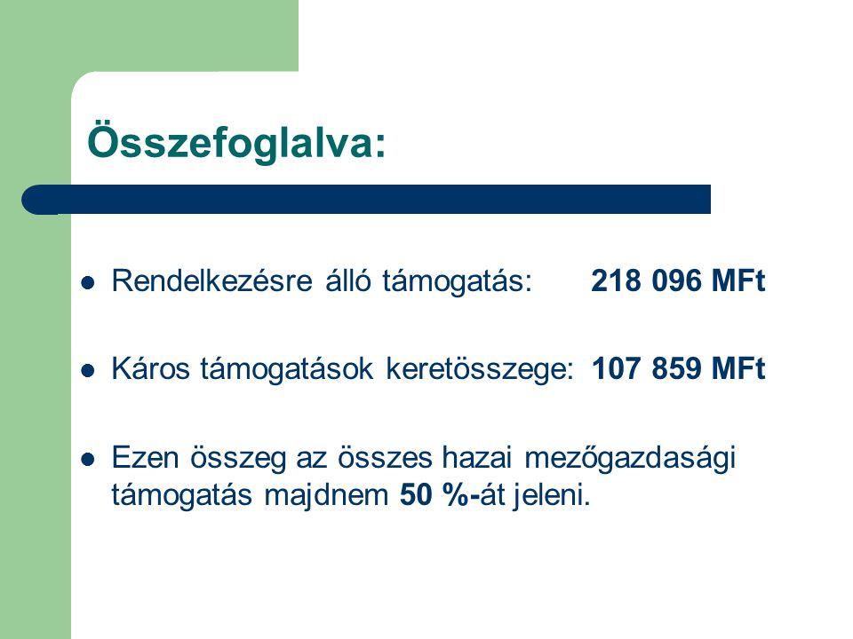 Összefoglalva: Rendelkezésre álló támogatás: 218 096 MFt