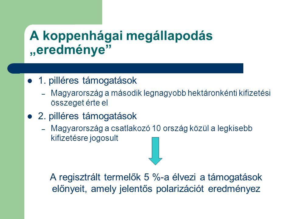 """A koppenhágai megállapodás """"eredménye"""