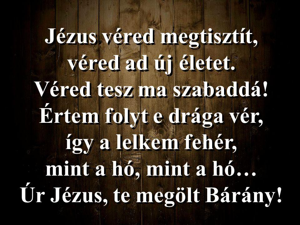 Jézus véred megtisztít, véred ad új életet.