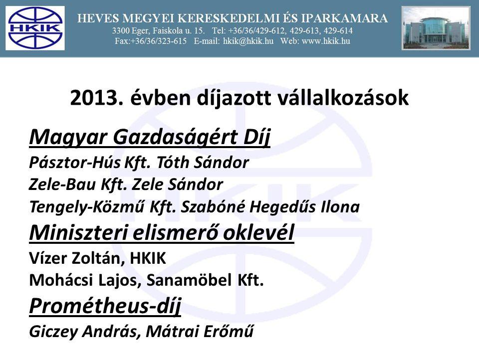2013. évben díjazott vállalkozások