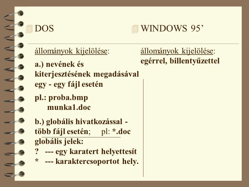 DOS állományok kijelölése: a