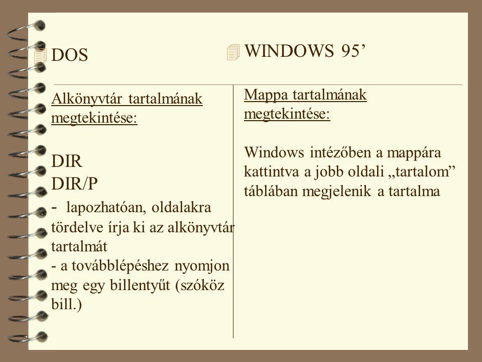 """WINDOWS 95' Mappa tartalmának megtekintése: Windows intézőben a mappára kattintva a jobb oldali """"tartalom táblában megjelenik a tartalma"""