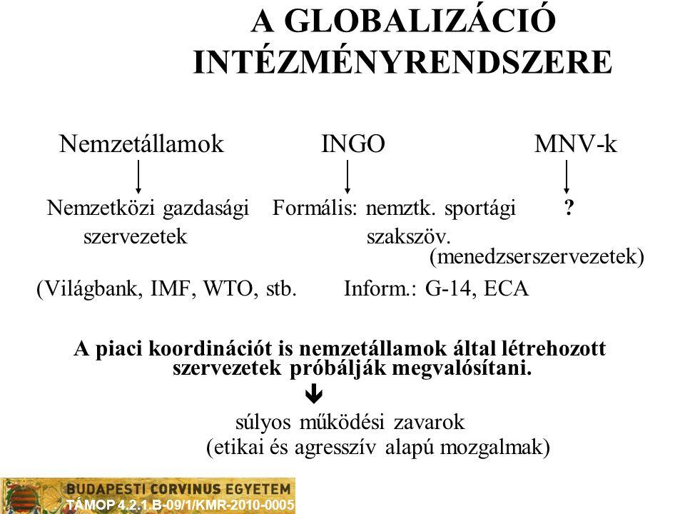 A GLOBALIZÁCIÓ INTÉZMÉNYRENDSZERE