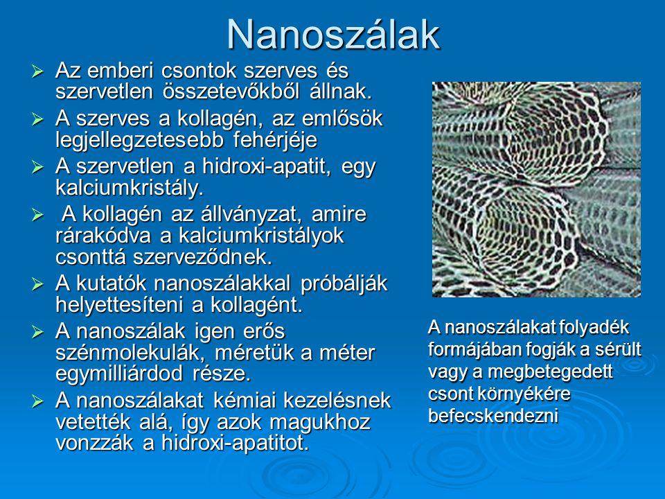 Nanoszálak Az emberi csontok szerves és szervetlen összetevőkből állnak. A szerves a kollagén, az emlősök legjellegzetesebb fehérjéje.