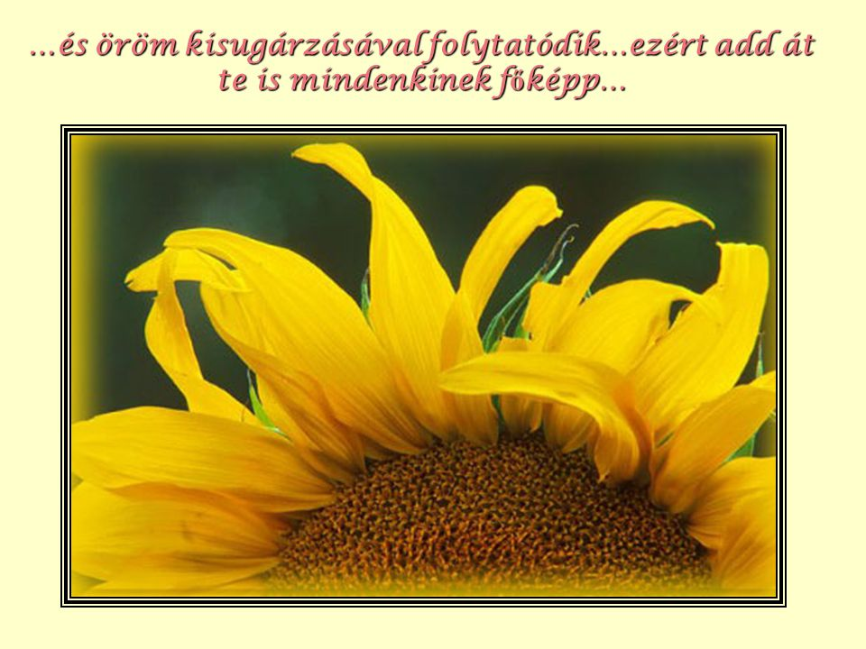 …és öröm kisugárzásával folytatódik…ezért add át te is mindenkinek főképp…