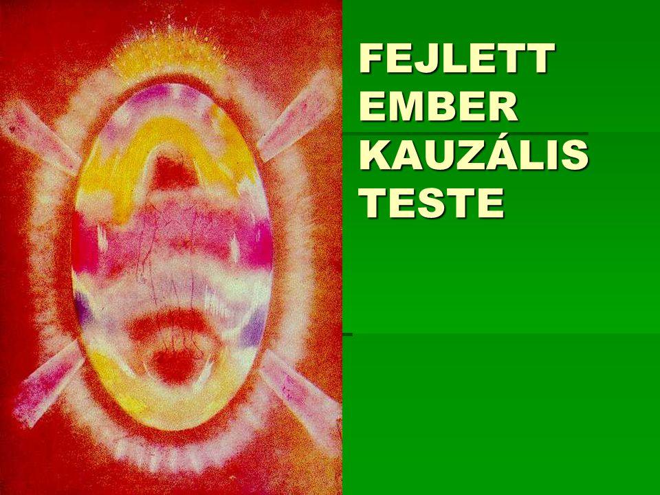 FEJLETT EMBER KAUZÁLIS TESTE