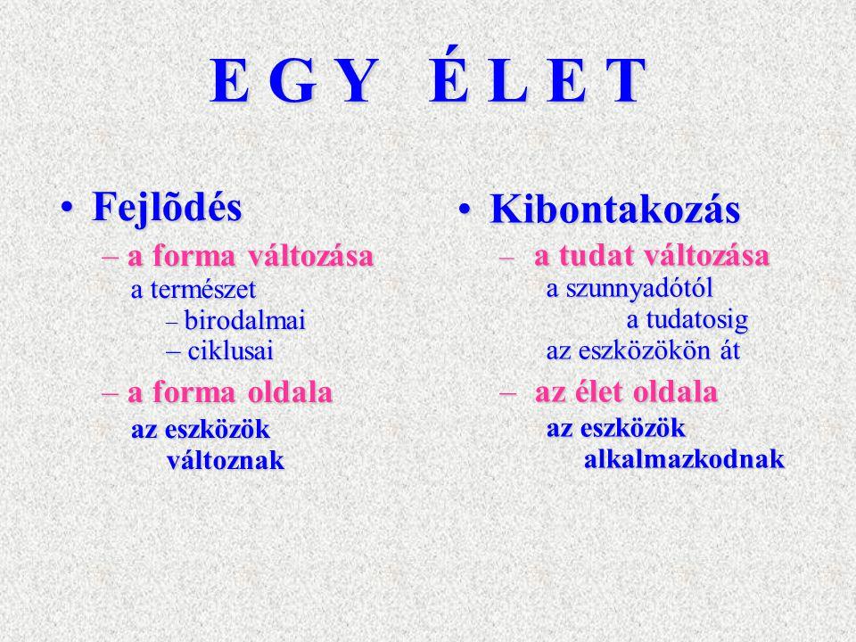 E G Y É L E T Fejlõdés Kibontakozás a forma változása a forma oldala