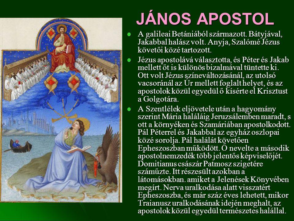 JÁNOS APOSTOL A galileai Betániából származott. Bátyjával, Jakabbal halász volt. Anyja, Szalómé Jézus követői közé tartozott.