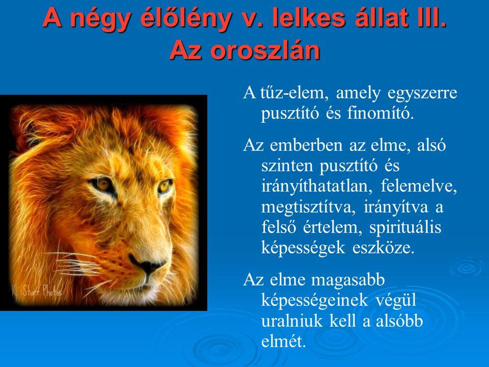A négy élőlény v. lelkes állat III. Az oroszlán